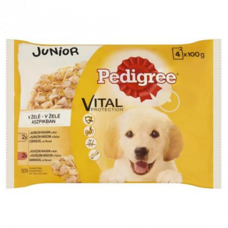 Pedigree junior 4x100g: 500 Ft